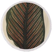 Maranta Regalis Round Beach Towel