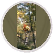 Marbled Orb Weaver Round Beach Towel