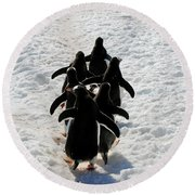 March Of Penguins Round Beach Towel