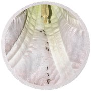 Marching Ants Round Beach Towel