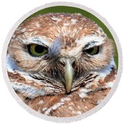 Marco Burrowing Owl - I Know What You're Thinking Round Beach Towel