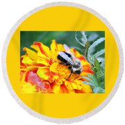 Marigold And The Bee Round Beach Towel