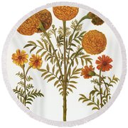Marigolds, 1613 Round Beach Towel