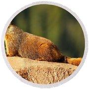 Marmot Life Round Beach Towel