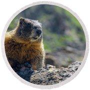 Marmot On The Ridge Round Beach Towel
