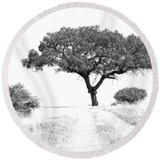 Marula Tree Round Beach Towel