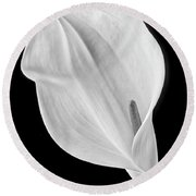 Marvelous Calla Lily In Black And White Round Beach Towel