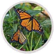 Marvelous Monarchs Round Beach Towel