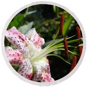Master Gardeners Art Floral Pink Lily Flower Baslee Troutman Round Beach Towel