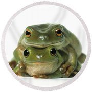 Mating Frogs Round Beach Towel