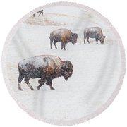 Matriarch Round Beach Towel