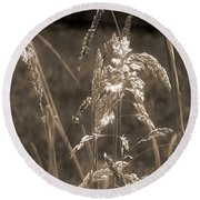 Meadow Grass In Sepia Round Beach Towel