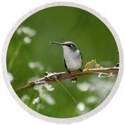Meadow Hummingbird Round Beach Towel