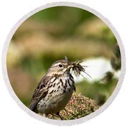 Meadow Pipit With Food Round Beach Towel