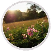 Meadow Sunset Round Beach Towel