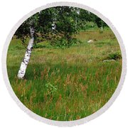 Meadow With Birch Trees Round Beach Towel