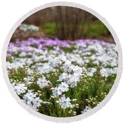 Meadow With Flowers At Botanic Garden In The Blue Mountains Round Beach Towel