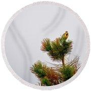 Meadowlark - 1 Round Beach Towel