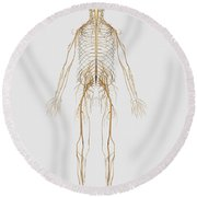 Medical Illustration Of Peripheral Round Beach Towel