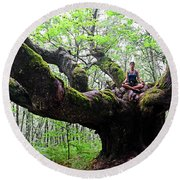 Meditation On Centenary Tree  Round Beach Towel