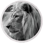 Meditative Lion In Black And White Round Beach Towel