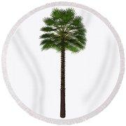 Mediterranean Fan Palm Tree Round Beach Towel