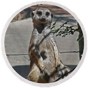 Meerkat 2 Round Beach Towel
