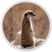 Meerkat Standing On Rock And Watching Round Beach Towel