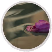 Melancholy - Discarded Rosebud Floating In A Fountain Round Beach Towel