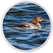 Merganser Round Beach Towel