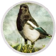 Message From The Magpie Round Beach Towel by Belinda Greb