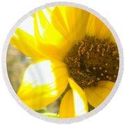 Metallic Green Bee In A Sunflower Round Beach Towel