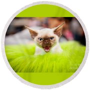 Mew Kitty Funny Mad Face Round Beach Towel