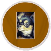 Mexican Chihuahua Puppy Round Beach Towel