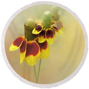 Mexican Hat II Round Beach Towel