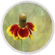 Mexican Hat IIi Round Beach Towel