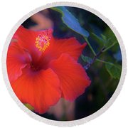 Mexican Hibiscus Round Beach Towel