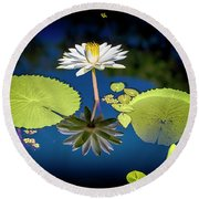 Mid Day Water Lily Reflection Round Beach Towel