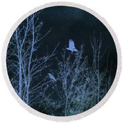 Midnight Flight Silhouette Blue Round Beach Towel