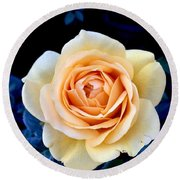 Midnight Rose Round Beach Towel