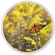 Migrating Monarch Butterfly Moses Cone Memorial Park North Carolina Round Beach Towel