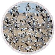 Migrating Snow Geese Round Beach Towel
