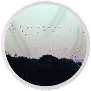 Migration Flyway Round Beach Towel