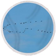 Migration In The Genes Round Beach Towel