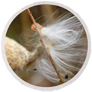 Milkweed Feathers Round Beach Towel