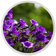 Mill Hill Inn Petunias Round Beach Towel