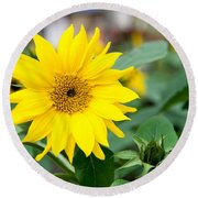 Mini Sunflower And Bud Round Beach Towel