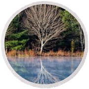 Mirror Mirror On The Pond Round Beach Towel