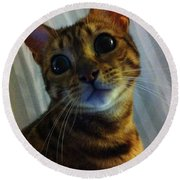 Mischievous Bengal Cat Round Beach Towel
