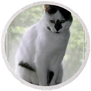 Miss Jerrie Cat With Watercolor Effect Round Beach Towel